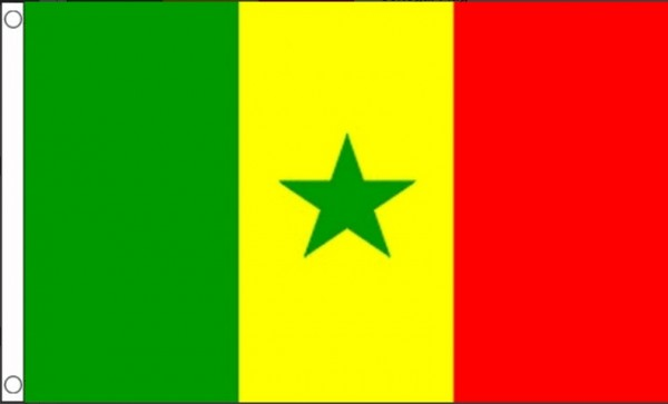Vlag Senegal 60x90cm