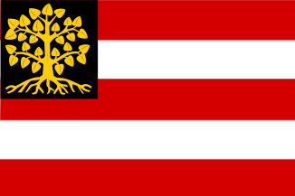 Vlag Den Bosch 's-Hertogenbosch 100x150cm