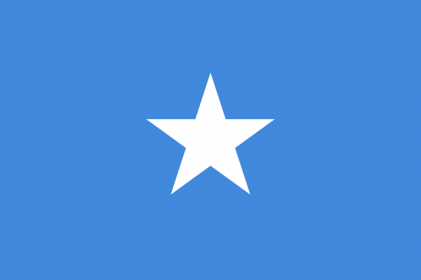 Vlag Somalie 100x150cm Glanspoly