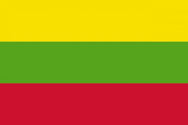 Grote vlag Hillegom
