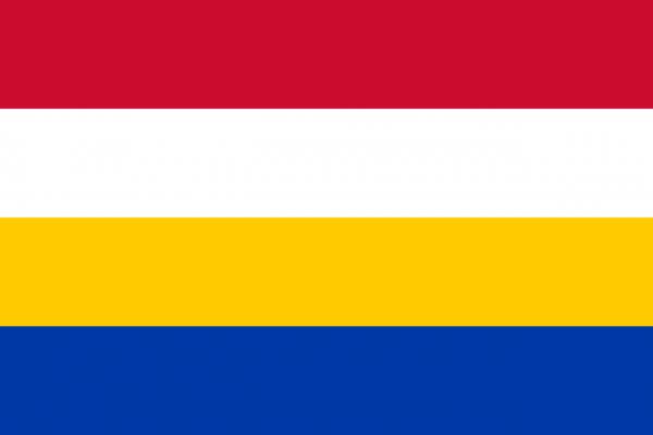 Grote vlag Renkum