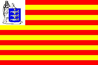 Vlag gemeente Enkhuizen | Enkhuizer vlaggen 20x30cm