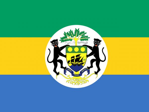 Vlag Gabon met wapen (1990-2016) 100x150cm
