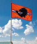 Oranje EK | WK vlag met leeuw XXL 200x300cm