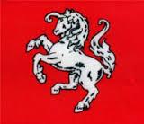 Tafelvlag Twente Twentse Ros 10x15cm vlaggetje met zwart