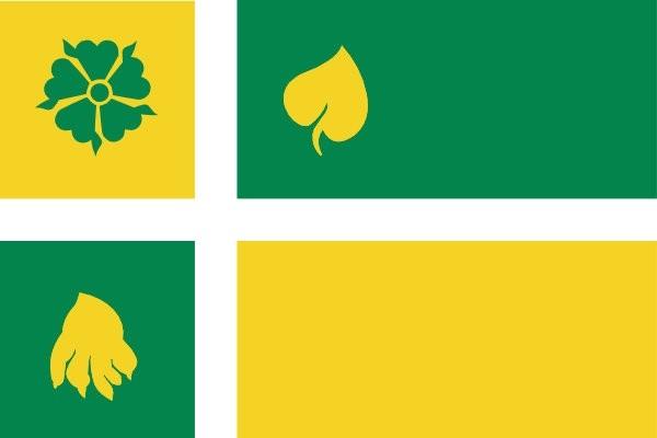 Vlag Hof van Twente 30x45cm bootvlag