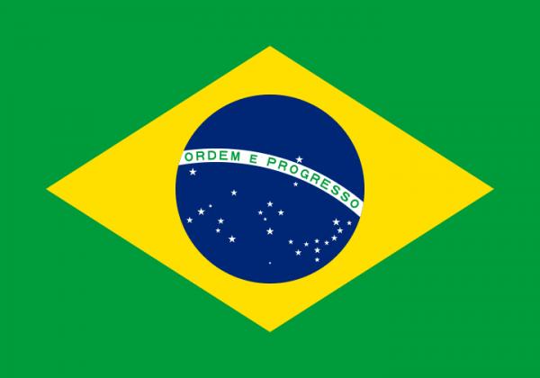 vlag Brazilië Braziliaanse vlaggen 100x150cm gevelvlag