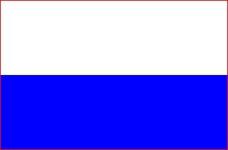 Vlag gemeente Kampen 20x30cm Kamper vlaggen kopen vlaggetje