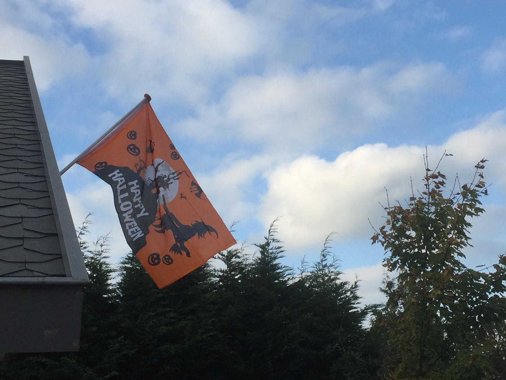 Happy Halloween vlag 90x150cm buiten