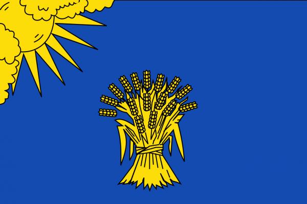 Grote vlag Reusel-De Mierden