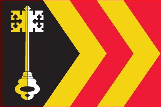 Vlag gemeente Bladel 200x300cm Bladelse grote mastvlag