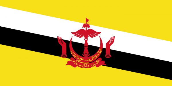 vlag Brunei | Bruneise vlaggen 100x150cm gevelvlag