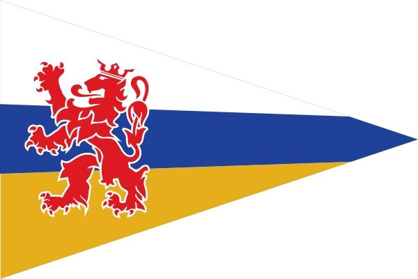 Puntvlag Limburg 20x30cm wimpeltje
