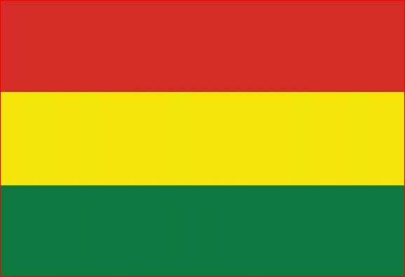 Vlag Bolivia Boliviaanse vlaggen 30x45cm gastenvlag
