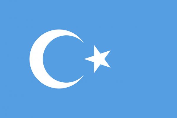 Vlag Oeigoeren 150x225