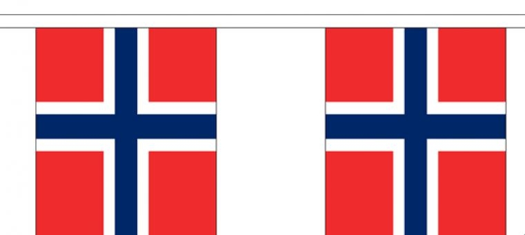 Vlaggenlijn Noorwegen Noorse vlaggenlijn 3m