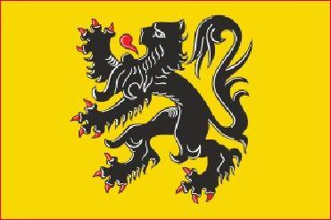 Tafelvlag Vlaanderen 10x15cm Vlaamse Leeuw vlaggen