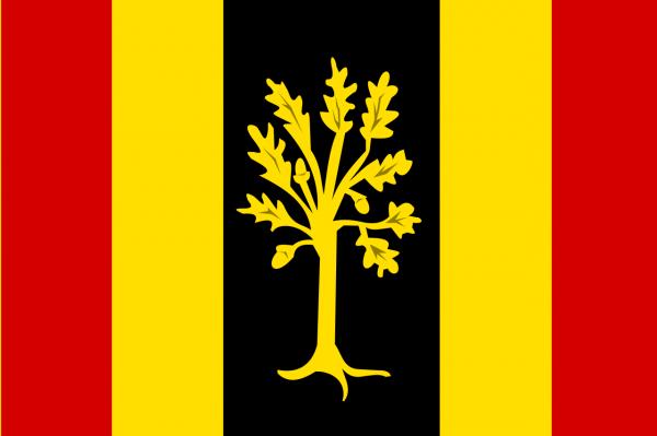 Grote vlag Waalwijk