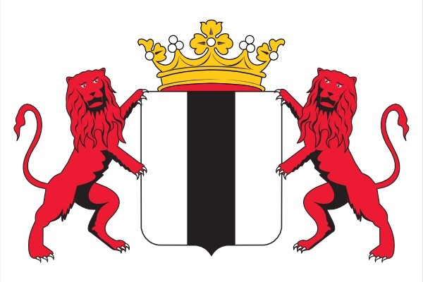 vlag Delft met wapen en leeuwen 70x100cm