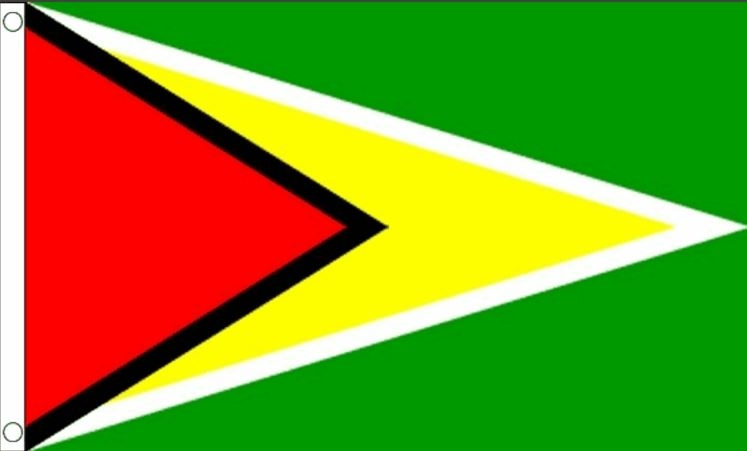 Vlag Guyana I Guyanese vlaggen 90x150 Best Value