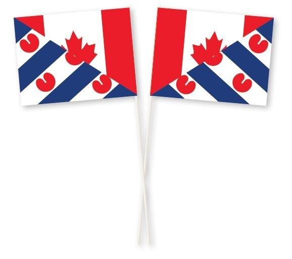 Zwaaivlag Canada Friesland 15x19cm
