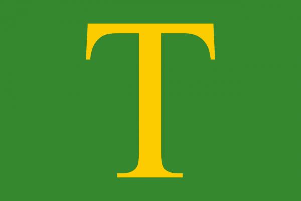 Grote vlag Sint Anthonis