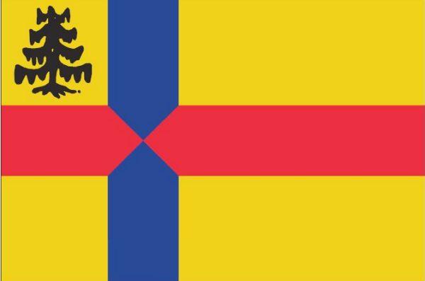 Vlag gemeente Roden 20x30cm Rodense vlaggen