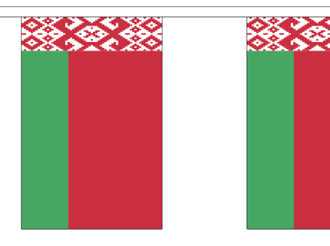 Vlaggenlijn Wit Rusland Belarus vlaggenlijn 3m