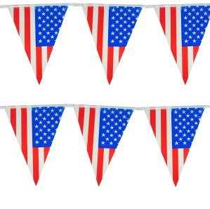 Vlaggenlijn Amerika 10m