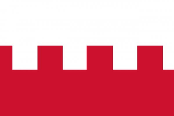 Vlag Rhenen