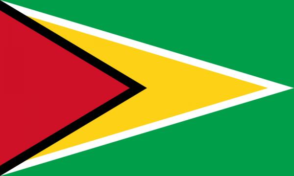 Vlag Guyana 100x150cm Glanspoly