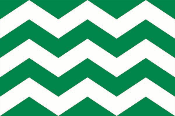 Vlag gemeente Westland | Westlandse vlaggen 30x45cm