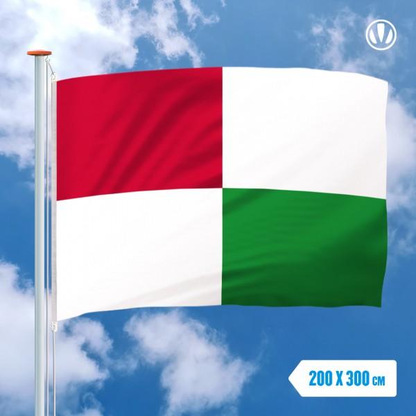 Grote Mastvlag Opsterland
