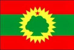 Tafelvlaggen Ethiopië Oromo Liberation Front | Ethiopische OLF tafel vlaggetje 10x15cm kopen bij Vlaggenclub