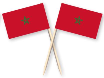 Cocktailprikkers met Marokkaanse vlag, Marokko Kaasprikkers, 50 stuks
