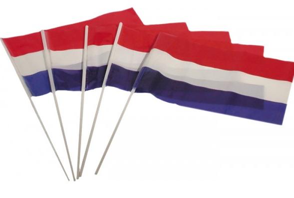 zwaaivlag Nederland | Nederland zwaaivlaggen 17x20cm plastic