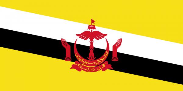 Tafelvlag Brunei met standaard