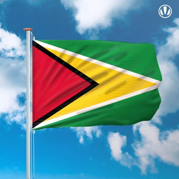 Mastvlag Guyana