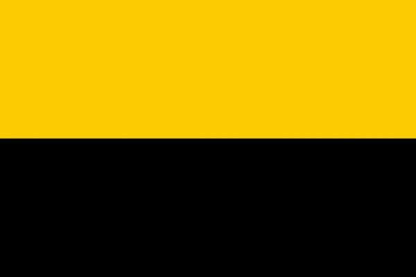 Grote vlag Tiel