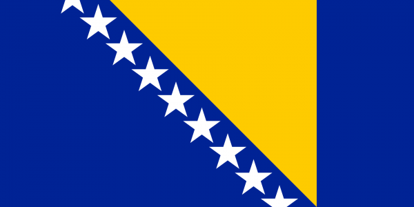 Vlag Bosnische vlag 100x150cm Glanspoly
