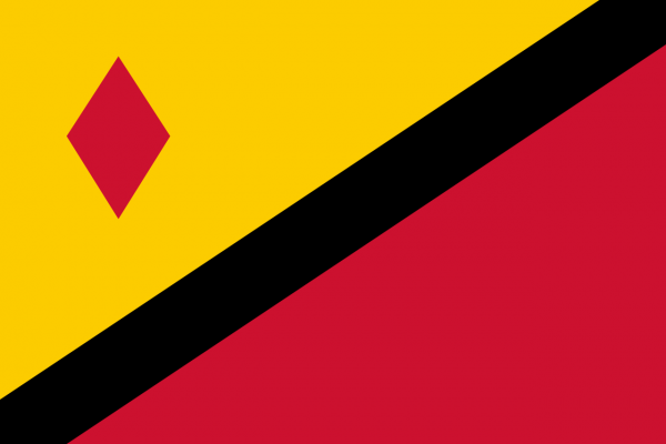 Grote vlag Stein