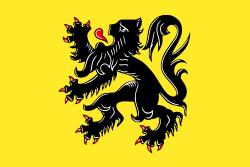 Vlaamse Leeuw 90x150cm Leeuwenvlag Vlaanderen