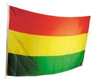 Vlag Carnaval Limburg rood/geel/groen 30x45cm
