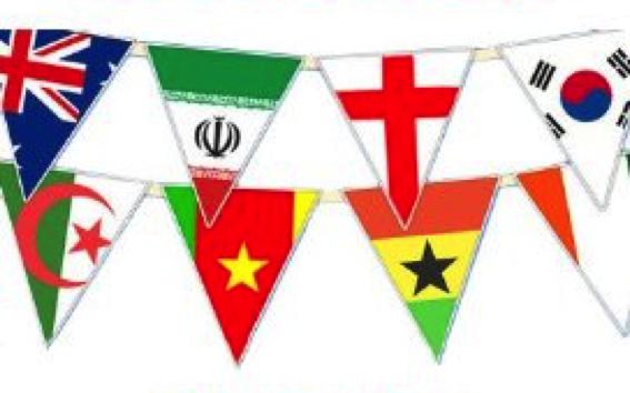 Vlaggenlijn internationale landen vlaggen 11,5m1 wimpellijn