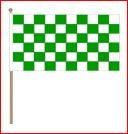 Zwaaivlag 30x45cm op houten stok lengte 60cm groen/wit geblokt