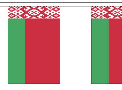 Vlaggenlijn Wit Rusland Belarus 3m