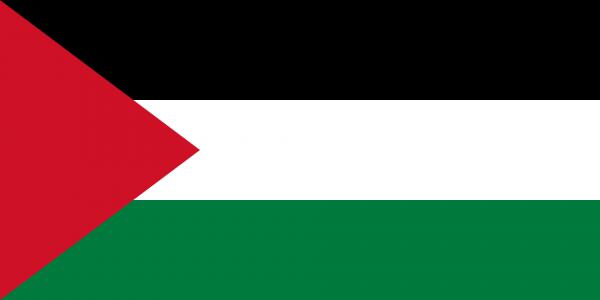 Vlag Palestina 100x150cm Glanspoly