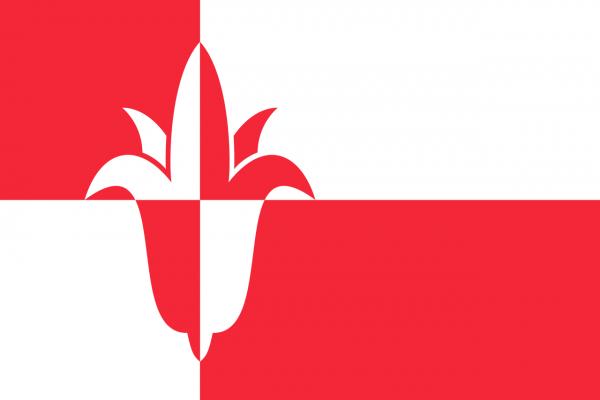 Grote vlag Bernheze