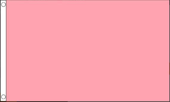 vlag lichtroze, babyroze, roze 90x150cm Best Value