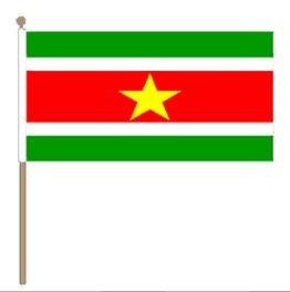 Grote zwaaivlag Suriname 30x45cm, stoklengte 60cm